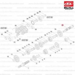 Nº16 - Tornillo a llave Allen TCCE M5x30 - Ref.: C24240390000