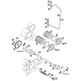 Nº 19 Tubo Aceite 250cc -...