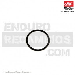 Nº 31 Anillo OR 27.2 Ref.:...
