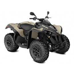 Renegade DPS T 650 CAN-AM 2021