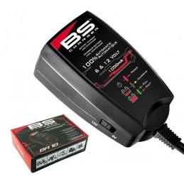 Cargador bateria BS Charger...