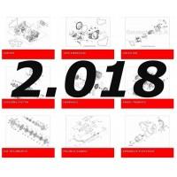 Año 2018